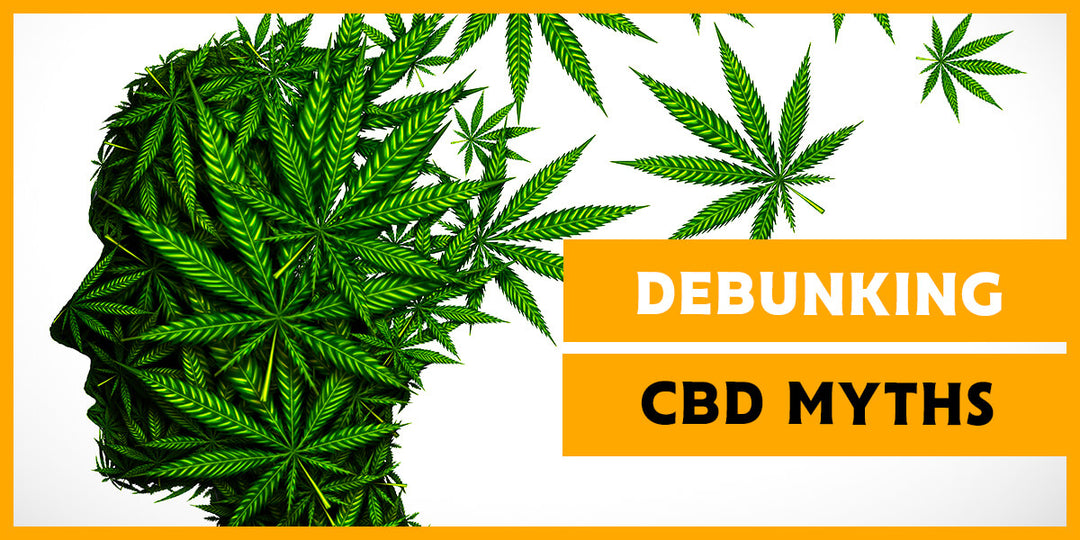 Debunking the Main CBD Myths