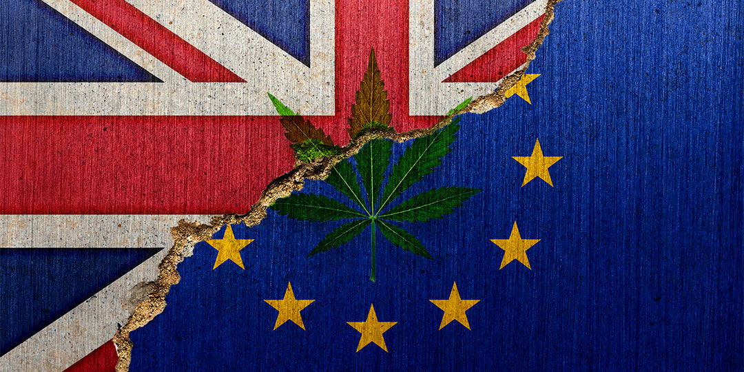 What does Brexit mean for CBD products? - HempElf UK Best CBD and Cannabis Products for sale online