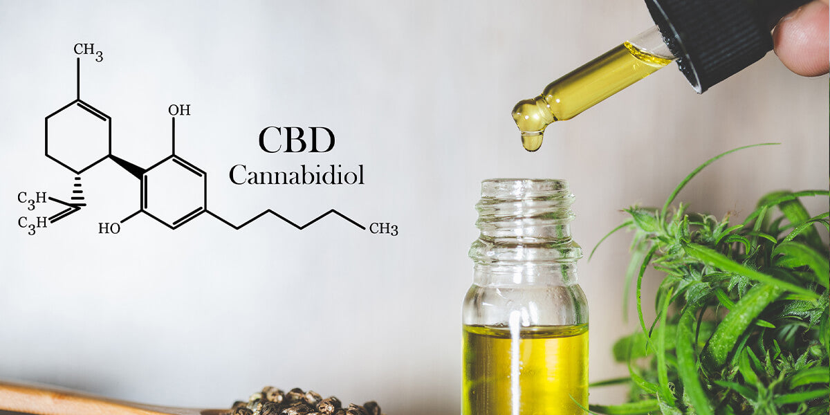 CBD Cannabidiol - What does Brexit mean for CBD products? - HempElf UK Best CBD and Cannabis Products for sale online