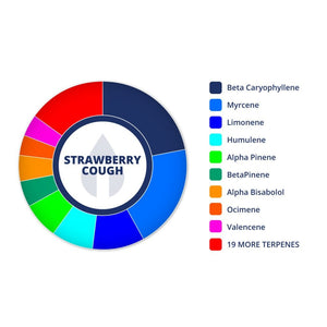 Strawberry Cough | Terpenes UK | 2ml