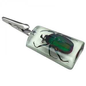 Glow-in-the-Dark Stand-Up Emerald Rose Chafer Clip
