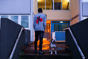 X + Hearts Jumper with dog