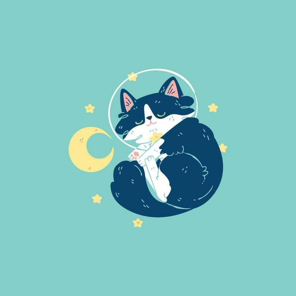 Orion the Cat - Space Time 8x8 Giclee Print