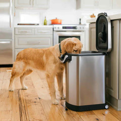 large pet food can - lifestyle dog eating out of can