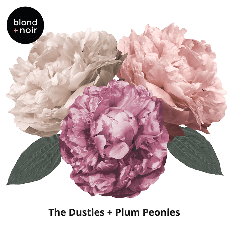 Mini - Dusties & Plum Peonies Wall Decals - Little Oak + Co