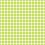 Lime Gingham  craft  vinyl sheet - HTV -  Adhesive Vinyl -  lime green and white pattern   HTV203