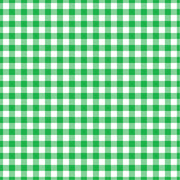 Gingham  craft  vinyl sheet - HTV -  Adhesive Vinyl -  green and white pattern   HTV202 - Breeze Crafts