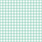 Mint Gingham  craft  vinyl sheet - HTV -  Adhesive Vinyl -  mint and white pattern   HTV204
