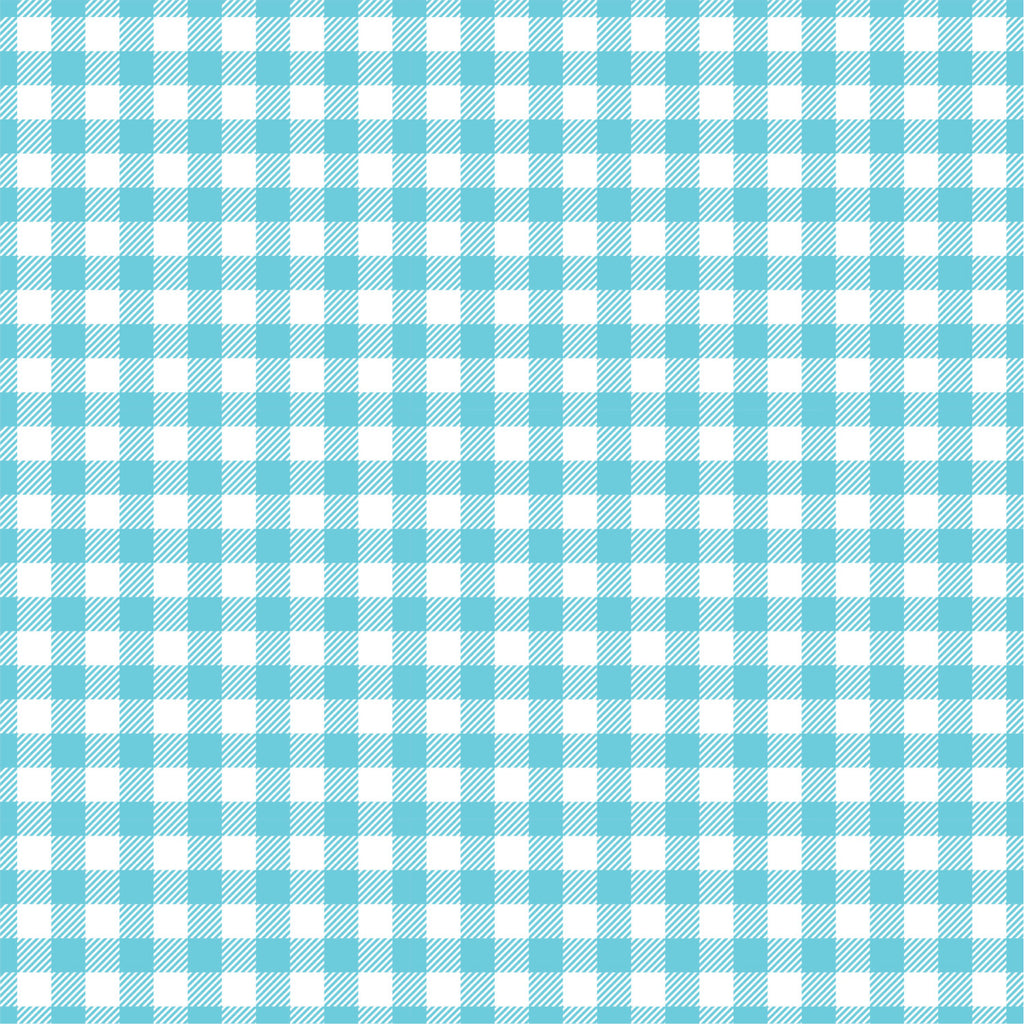 Aqua Gingham  craft  vinyl sheet - HTV -  Adhesive Vinyl -  aqua and white pattern   HTV205 - Breeze Crafts