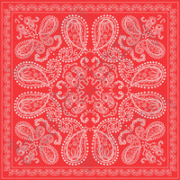 Red bandana pattern printed craft  vinyl sheet - HTV -  Adhesive Vinyl -  HTV6000