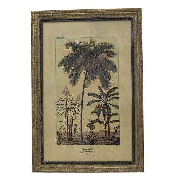 Botanical Wall Art - Coconut Tree