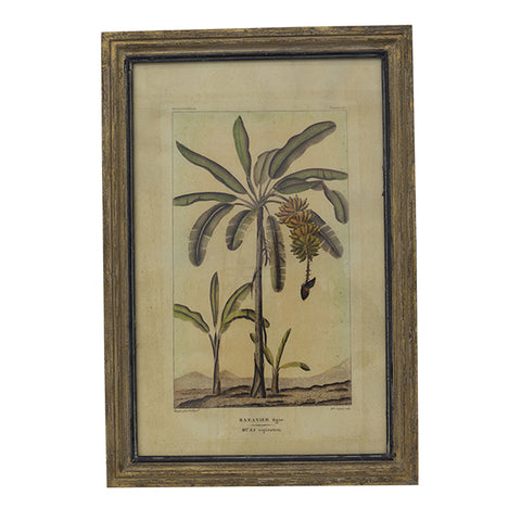 Grey Frame Print Wall Art - Papaya