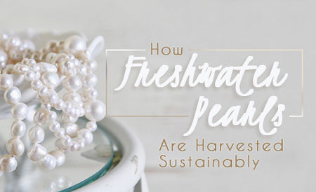 sustainably harvested freshwater pearls