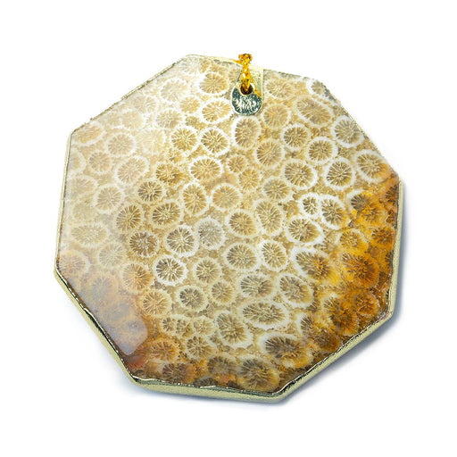 2x2 inch Fossilized Tan Coral Gold Leafed Pendant Focal Bead 1 piece
