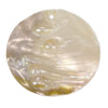 54mm Mother of Pearl Disc Pendant 1 piece