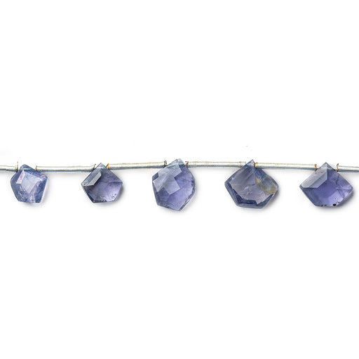 Light Iolite Faceted Top Drilled Pentagon