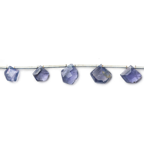 Best range of Light Iolite Faceted Top Drilled Pentagon - Buy From The Bead Traders Online Store