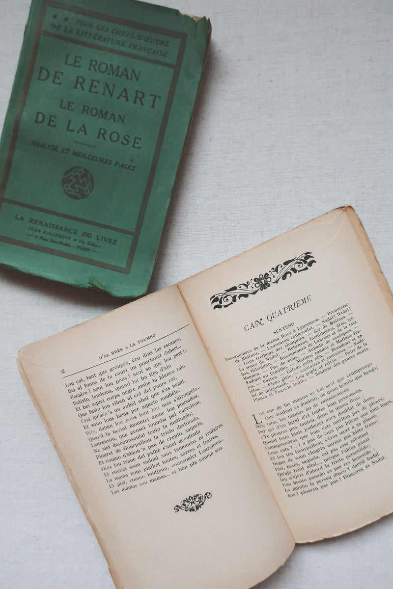 Vintage French Book, Set of 2