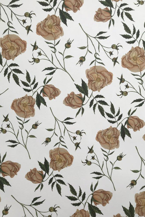 Dog Rose Gift Wrap