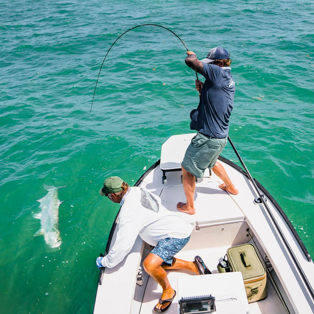 Tarpon on the fly