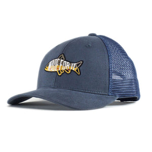 Wade For it Brownie Mesh Snapback