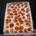 Bulk Citrine Points, 4lb Tray, Grade A
