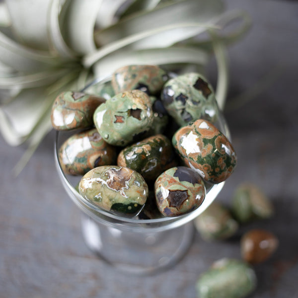 Rainforest Jasper, Rhyolite Tumbled Stone, 1in
