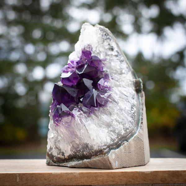 cut base Amethyst Geode with extra deep purple crystals