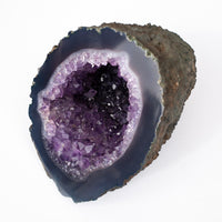 This is a dark purple Amethyst geode with a unique full circle shape that looks like a cornucopia of Amethyst! The purple color is idea and the crystals are extra clean. A smoky blue ring encircles the opening.