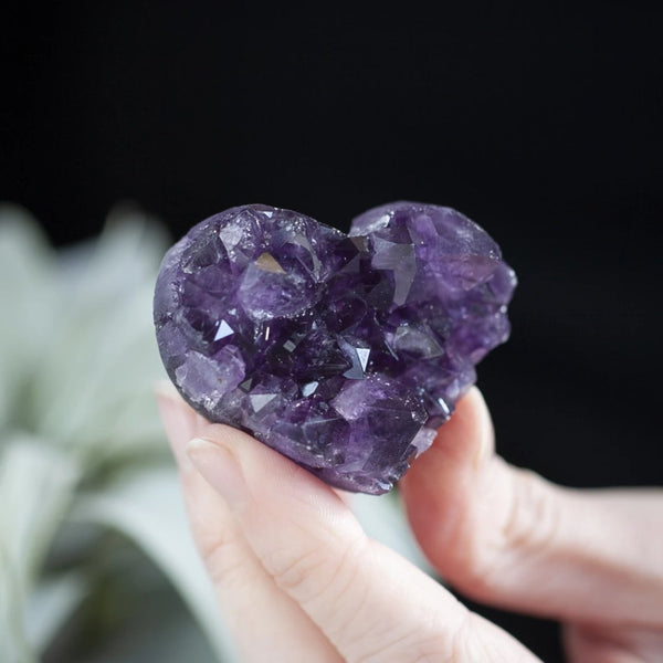 Amethyst Heart, EQ