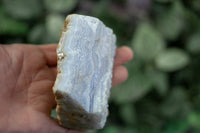 Blue Lace Agate | Large, 9OZ Rough Specimen 38 | Genuine, Namibia