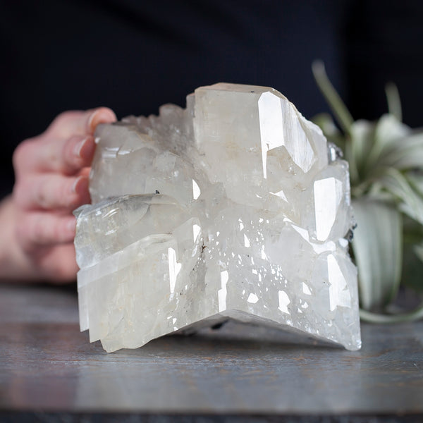 White Calcite with Pyrite/Marcasite, 3lb 11oz, Twinned Crystal