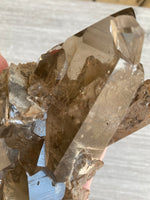 Smoky Quartz with Rutile