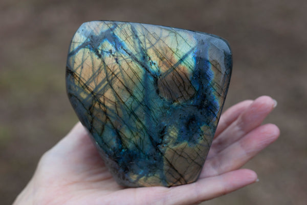 Flashy Gold Labradorite Polished Freeform for Display
