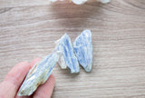 Blue Kyanite Crystal Chunk | 1in,  Raw Kyanite Pieces