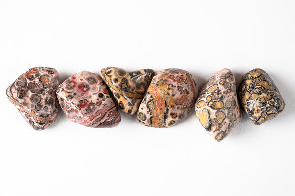 Leopard Skin Jasper Stone, pink and orange with black swirls and spots