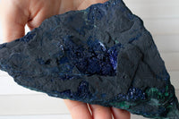 Azurite Malachite | 6in, Royal Blue, Druzy Crystal Specimen