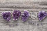 Small Amethyst Clusters