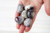 Porcelain Jasper Stone | Large, Tumbled Pink, Gray and White Stone