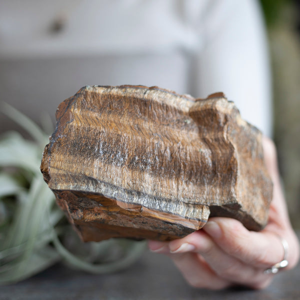 Raw Tiger's Eye Stone Slab, 1lb 13oz