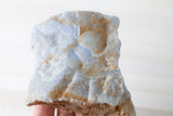 Blue Lace Agate | 10OZ, Large, Raw Genuine Specimen | 55