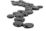 Shungite Worry Stone