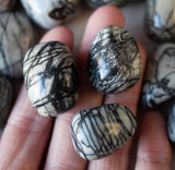 Spiderweb Jasper Stone | Large .8in - 1in Tumbled Stone