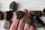 Stromatolite Stone, Brown and Black Fossil, tumbled Stones