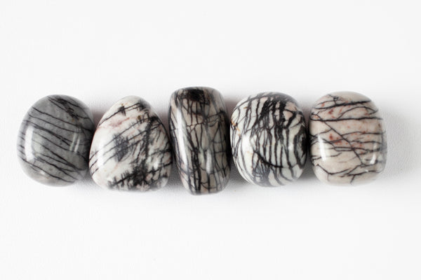 Black and white spiderweb jasper stones