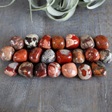 Poppy Jasper Stone, Tumbled, 1in