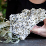 Pyrite in Quartz, Large Crystal