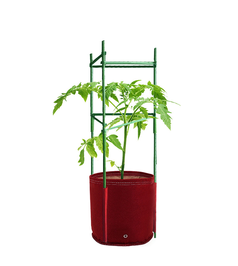 products/TOM-M_BloomBagz_Mini_Tomato_Planter.jpg