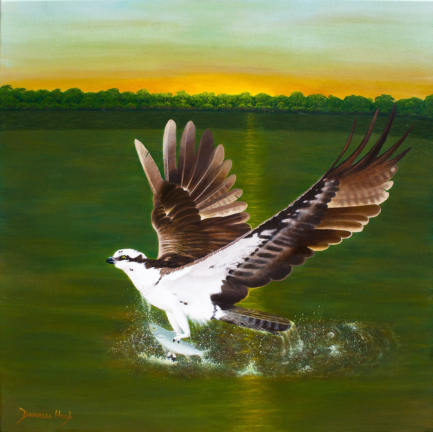 Osprey Sunrise – Original Acrylic Canvas by Darrell Hook