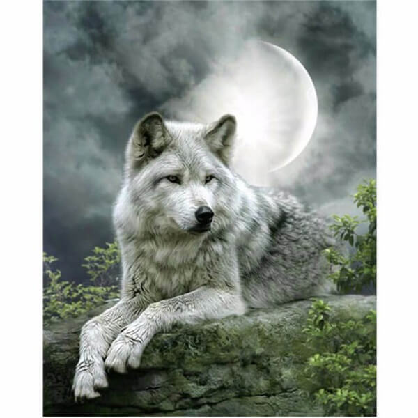 Diamond Oloee White Wolf Under Moon - OLOEE